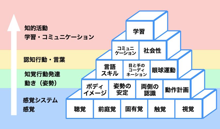 発達のピラミッド